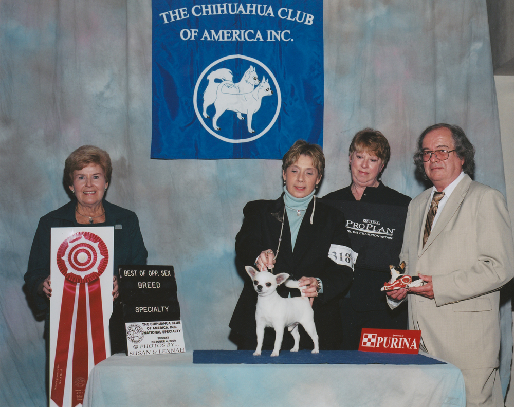 2009 CCA Fall National Specialty-SC-BOV_BOS