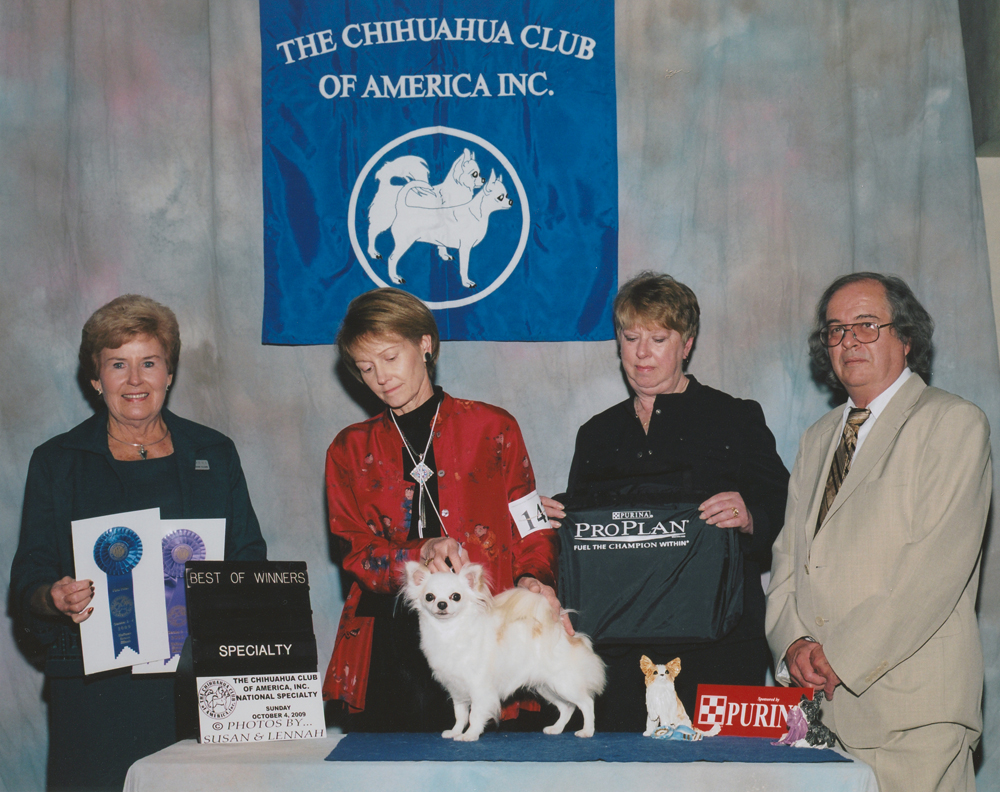 2009 CCA Fall National Specialty-LC-BOS_BOV