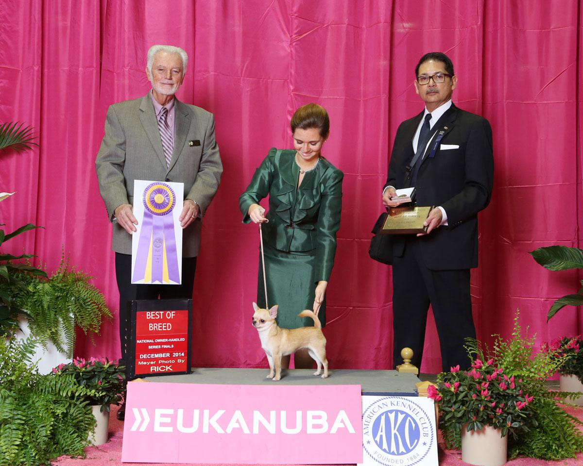 Best of Variety - 2014 CCA Eukanuba Regional
