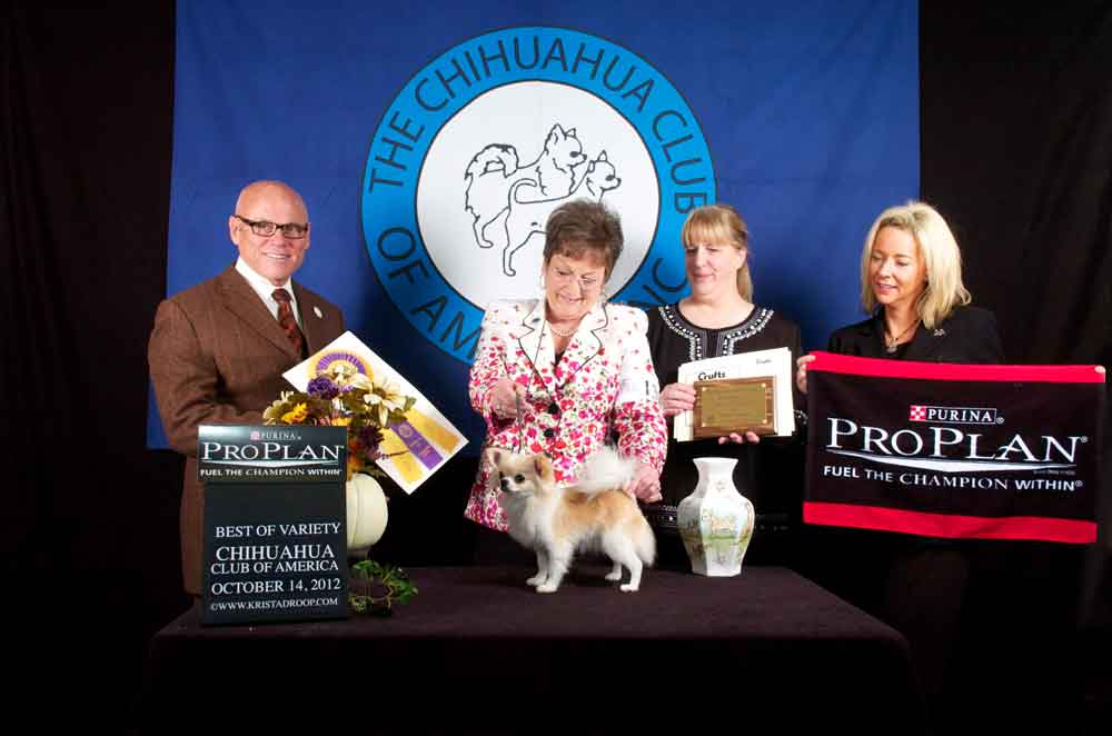 2012 CCA Fall National Specialty