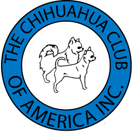 The Chihuahua Club of America