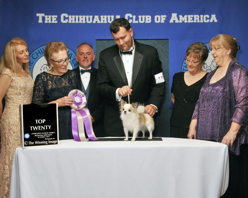 2015 Top 20 GCh Ouachitah Diamond In The Sky At Lone Pine