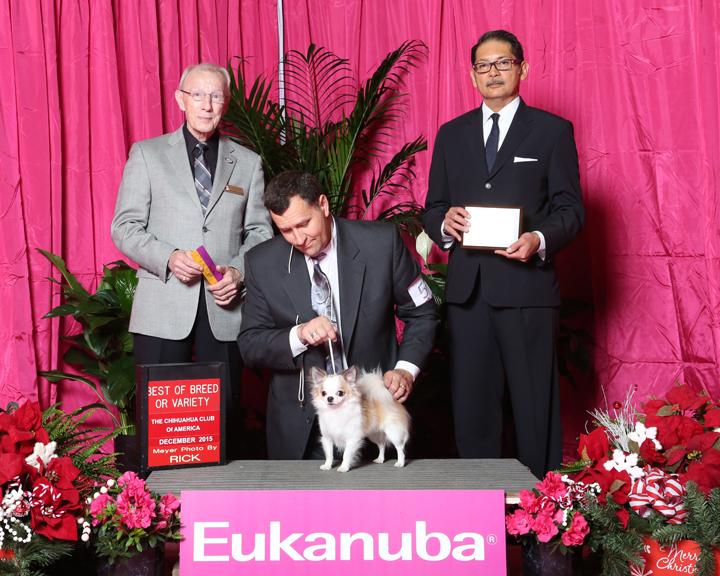 2015 BOV LC Eukanuba Regional
